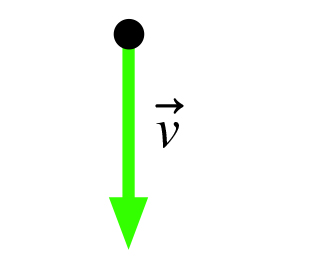 The figure shows velocity vector v pointing vertically downward.