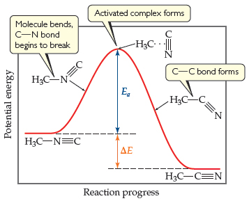 A graph has reaction progress on the x-axis and potential energy on the y-axis. The reaction begins with potential energy 1/3 up the y-axis for CH3NC (CH3 is single bonded right to N, which is triple bonded right to C). As the curve climbs toward a high peak, the molecule bends, and the C-N bond begins to break. At the peak of the curve, near the top of the y-axis, the activated complex forms (CH3 is joined by a dotted line to the triple bond between C and N, which are now arranged vertically). The difference in height between the peak and the potential energy of the reactant molecule is Ea. The curve then declines from the peak toward the products as the C-C bond forms (CH3 is single bonded right to C, which is triple bonded below, angled right, to N). The product, CH3 single bonded right to C, which is triple bonded right to N, is at a lower potential energy than the reactant. The difference in potential energy between the reactant and the product is delta E.