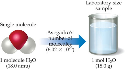 A single molecule of H2O is 18 atomic mass units. Avogadro's number of water molecules in a mole of water is shown filling a laboratory-size sample in a beaker; 1 mole of H2O is 18.0 grams.