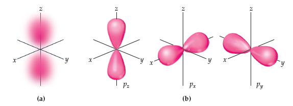 A)  a) Dot and shape representation of the pz orbitals.  The dot representation shows oval dot scatterplots centered along the vertical z-axis on either side of the x, y, z origin. A shape representation shows two vertical teardrop shapes with the tapered ends near the origin, with a small space between them. B) Shape representation of the pz orbitals.  A shape representation shows two horizontal teardrop shapes centered along the horizontal x-axis on either side of the x, y, z origin, with the tapered ends near the origin and a small space between them. C) c) Shape representation of the py orbitals.  A shape representation shows two diagonal teardrop shapes centered along the diagonal y-axis on either side of the x, y, z origin, with the tapered ends near the origin and a small space between them.