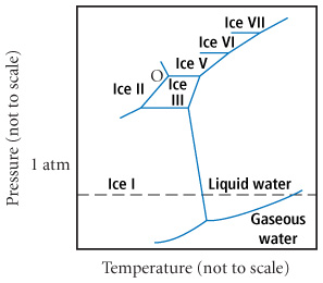 A diagram of temperature versus pressure. An upward curving line extends from the origin to about .5 atm. From there another upward curving line extends upward, and a straight line extends upward with a negative slope. The region below the two curving lines is labled gaseous water. The region to the right of the vertical line is labled liquid water, and to the left is labled ice one. At the top of the upward line is a trapezoidal shaped region, labled ice three within. To the left of this is a region labled ice two. Above the trapezoid is a region labled ice five. Point O lies at the vertex of the trapezoid and a line extending outward from its upper left hand corner.