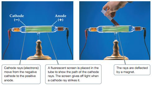 Cathode rays (electrons) move from the negative cathode to the positive anode. A fluorescent screen is placed in the tube to show the path of the cathode rays. The screen gives off light when a cathode ray strikes it. The rays are deflected by a magnet and can be seen bending in the tube in the photograph.