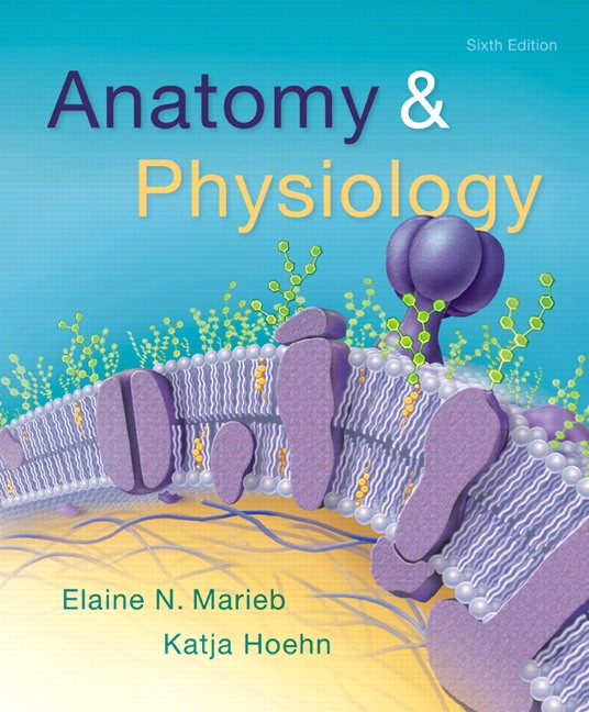6th Edition Anatomy And Physiology ISBN 13 9780134156415