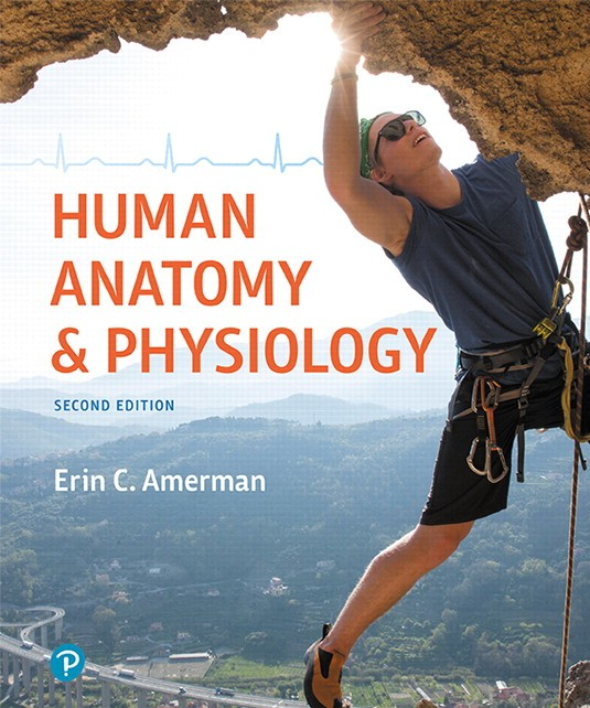 What is Anatomy & Physiology? - Tutoring Videos for Anatomy/Physio
