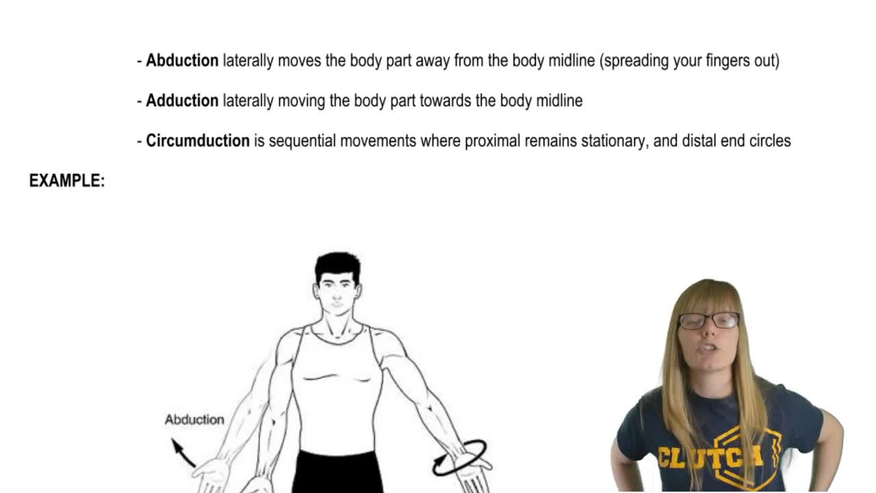 Lujo What Is Circumduction In Anatomy Inspiración - Imágenes de ...