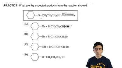 What are the expected products from the reaction shown? ...