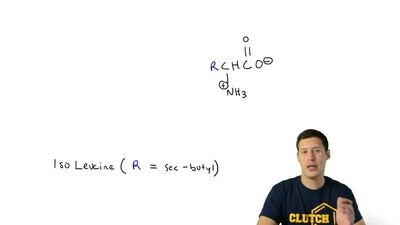 Some of the most important organic compounds in biochemistry are the α-amino a...