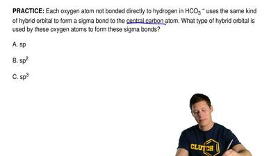 Each oxygen atom not bonded directly to hydrogen in HCO 3 – uses the same kind...