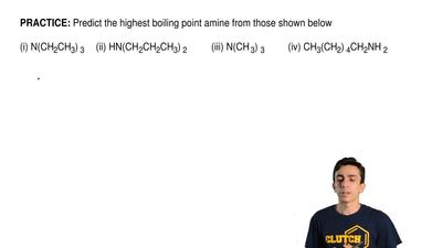 Predict the highest boiling point amine from those shown below   (i) N(CH2CH3)...