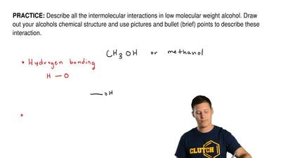 Describe all the intermolecular interactions in low molecular weight alcohol. ...