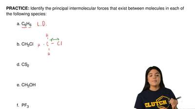 Identify the principal intermolecular forces that exist between molecules in e...