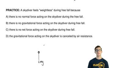 "A skydiver feels ""weightless"" during free fall because  A) there is no normal ..."
