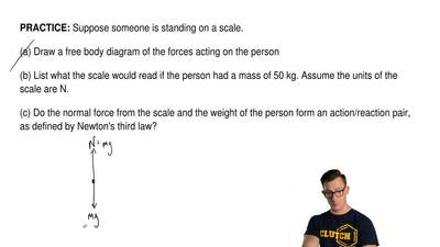 Suppose someone is standing on a scale.   (a) Draw a free body diagram of the ...