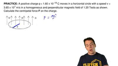 A positive chargeq= 1.60 x 10-19C moves in a horizontal circle with a spee...