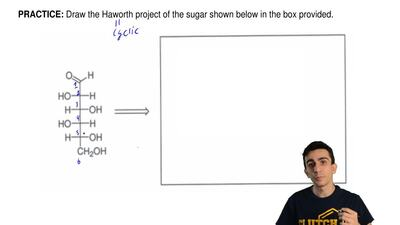 Draw the Haworth project of the sugar shown below in the box provided. ...