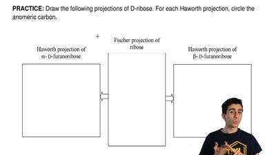 Draw the following projections of D-ribose. For each Haworth projection, circl...