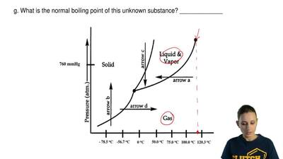 Answer the following questions based on the following phase diagram given belo...
