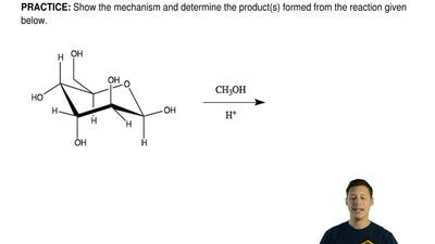 Show the mechanism and determine the product(s) formed from the reaction given...