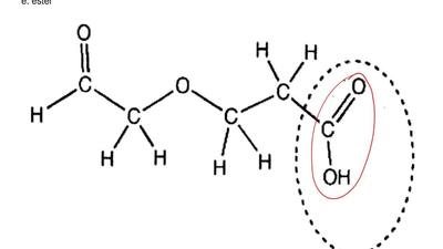 Please look at the following compound and name the circled functional group.  ...