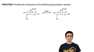 Provide the mechanism of the following glycosidation reaction.  ...