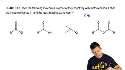 Place the following molecules in order of their reactivity with methoxide ion....