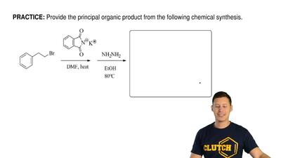 Provide the principal organic product from the following chemical synthesis. ...