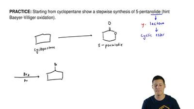 Starting from cyclopentane show a stepwise synthesis of 5-pentanolide (hint Ba...