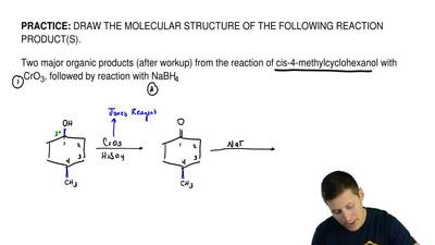 DRAW THE MOLECULAR STRUCTURE OF THE FOLLOWING REACTION PRODUCT(S).  Two major ...