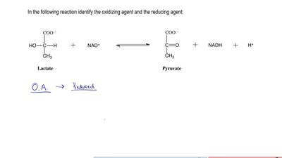 In the following reaction identify the oxidizing agent and the reducing agent:...