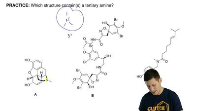 Which structure(s) contain(s) a tertiary amine? ...