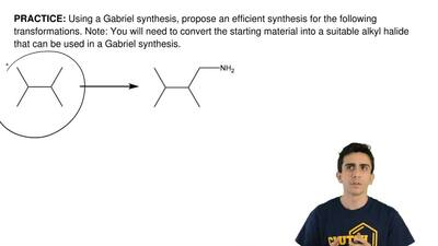 Using a Gabriel synthesis, propose an efficient synthesis for the following tr...