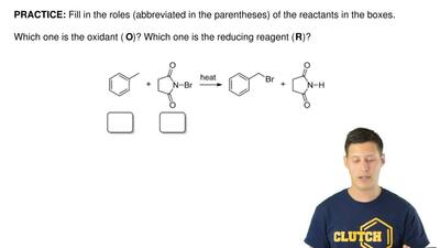 Fill in the roles (abbreviated in the parentheses) of the reactants in the box...